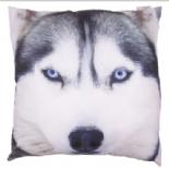 Wolf Photo Design Cushion